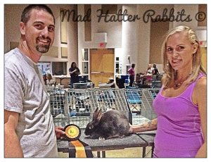 Beretta, our blue otter Satin doe, won Best in Show!