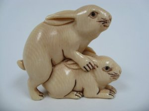 Bunnies mating. Artistically.