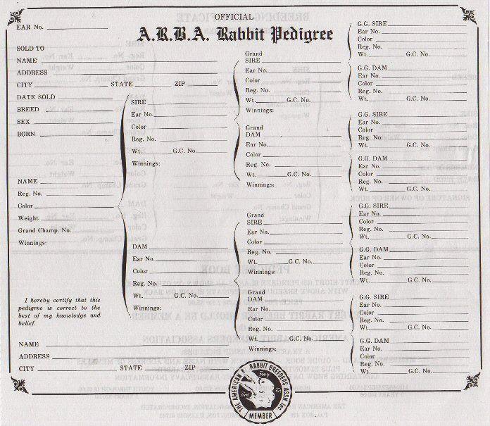 roundup of rabbit pedigree programs mad hatter rabbits